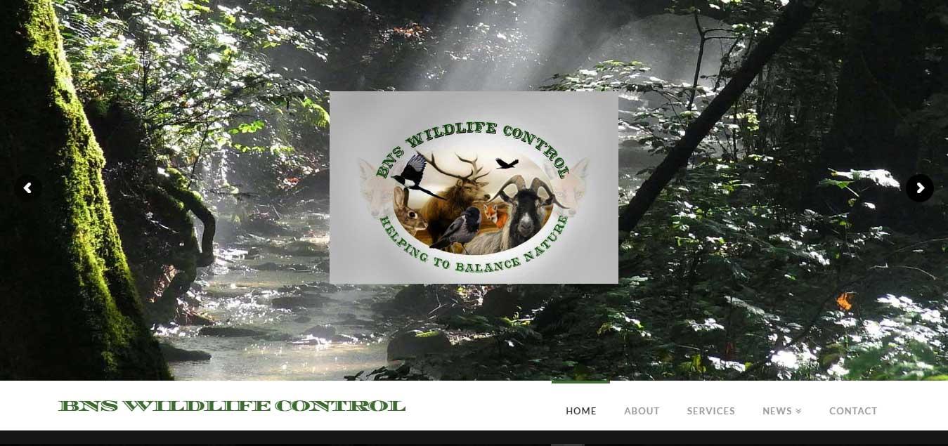 BNS Wildlife Control