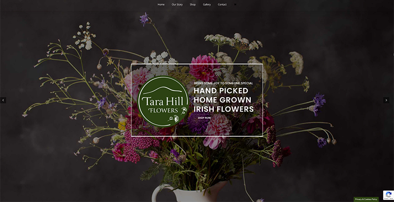 tara hill flowers web design gorey